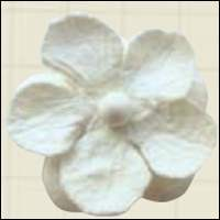 Paper flowers - white