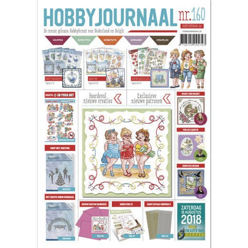 Hobbyjournaal 160 + 3d push out bubbly girls