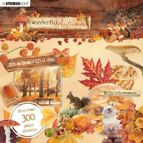 Studio Light - Die cut book - Wonderful Autumn - Nr. 664