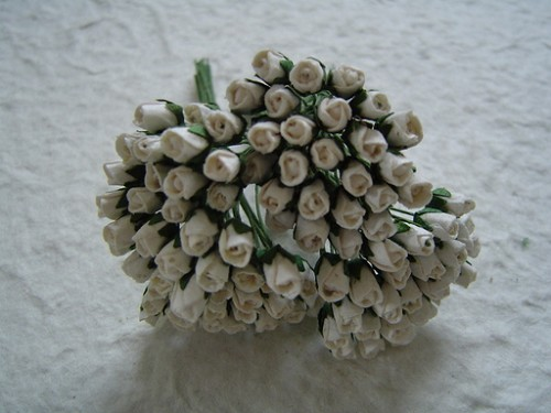 Mulberry Closed Rose Buds White